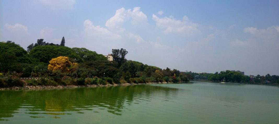 A rejuvenated lake in Bengaluru